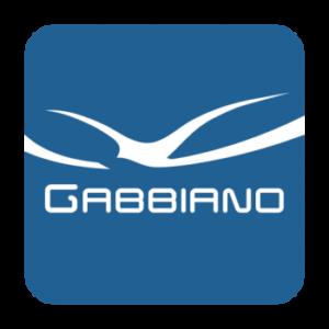 gabbiano2 icon